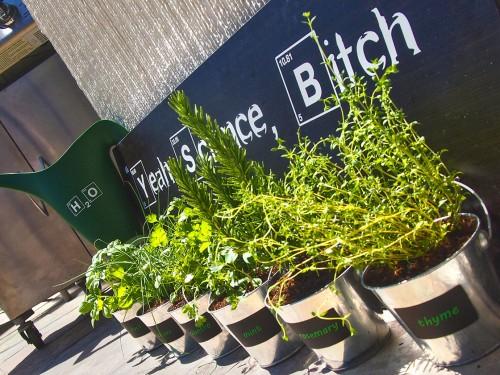 Breaking Bad Reclaimed Hanging Herb Garden